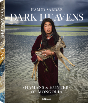 The front cover of Hamid Sardar's Dark Heavens