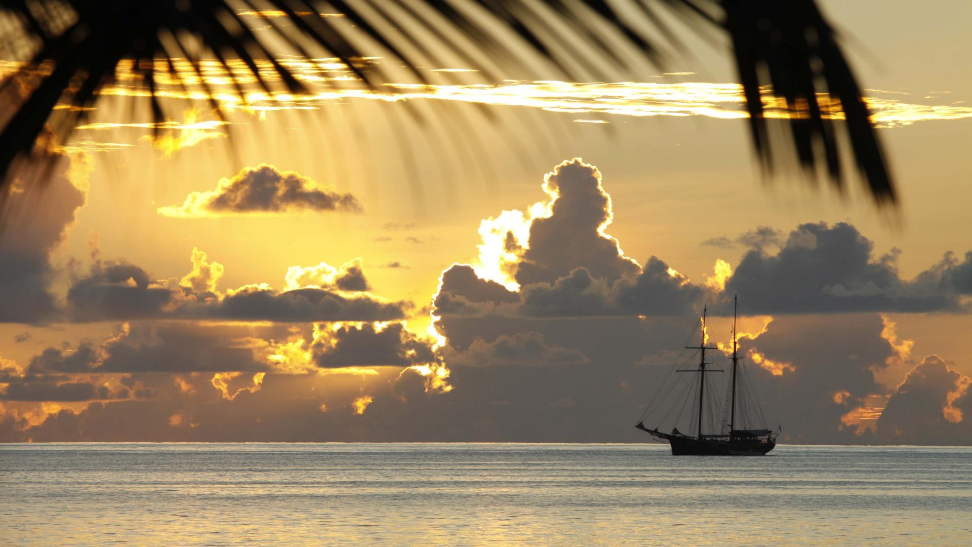 Liveaboard diving in the Seychelles