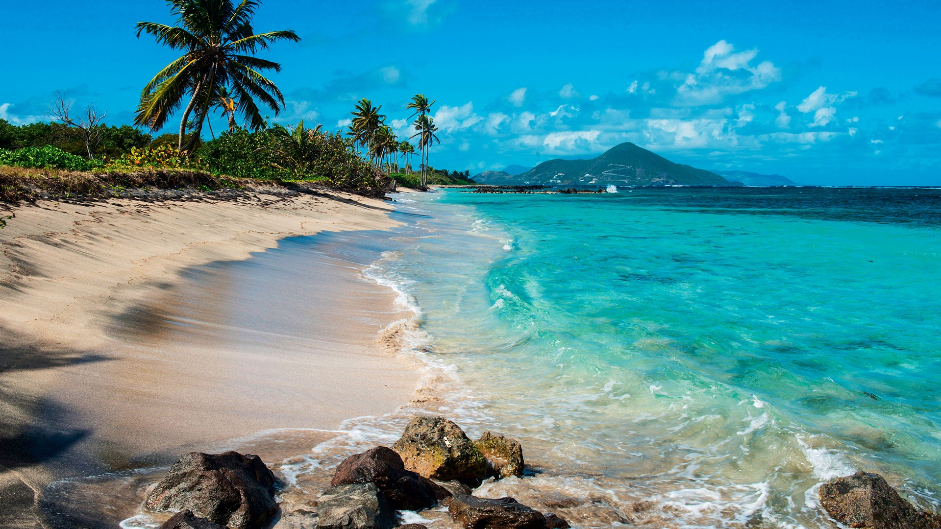 Desert Island Dining: delightful food and deadly booze in ...