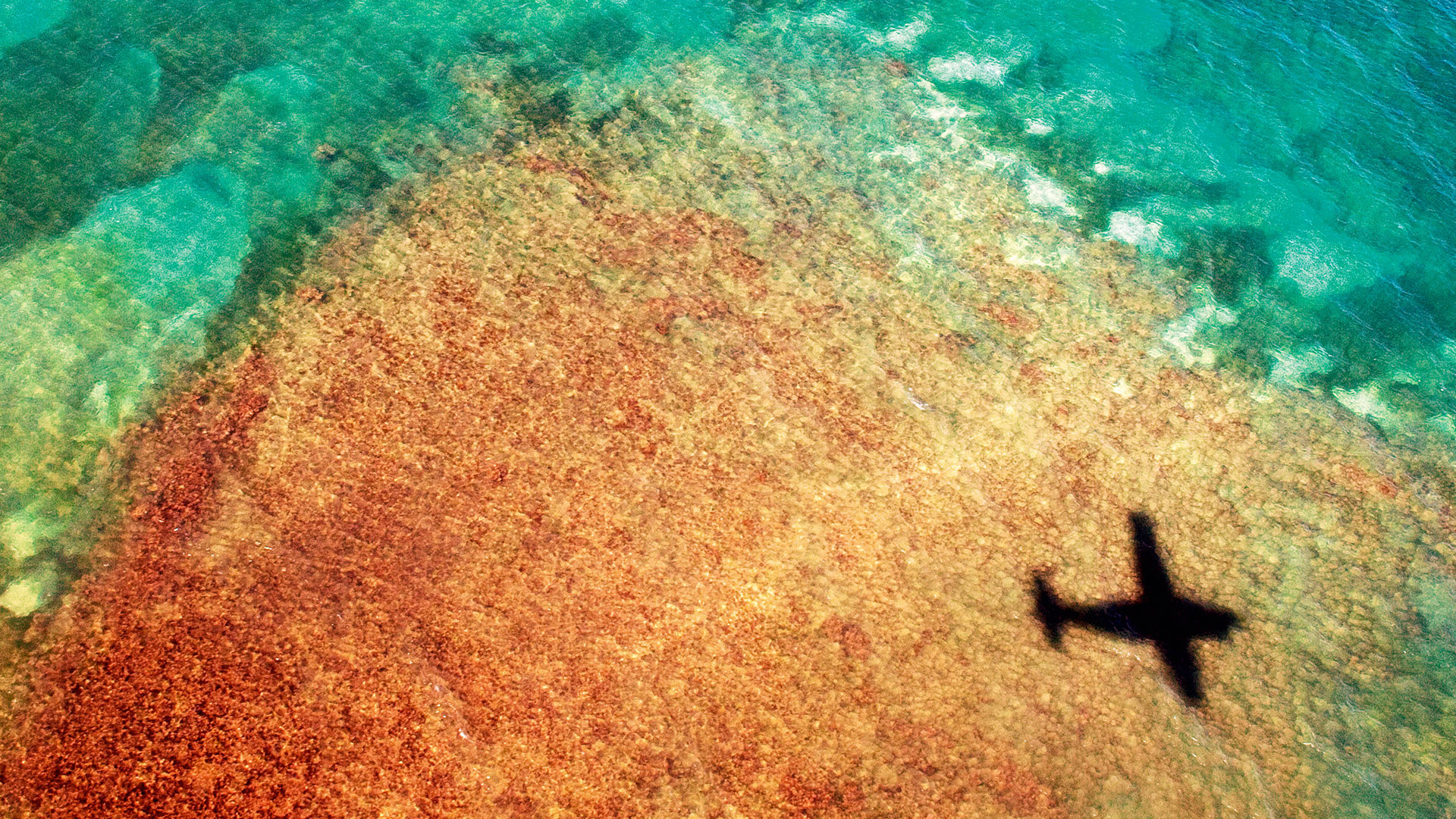 The shadow of a plane over the sea in Puerto Rico