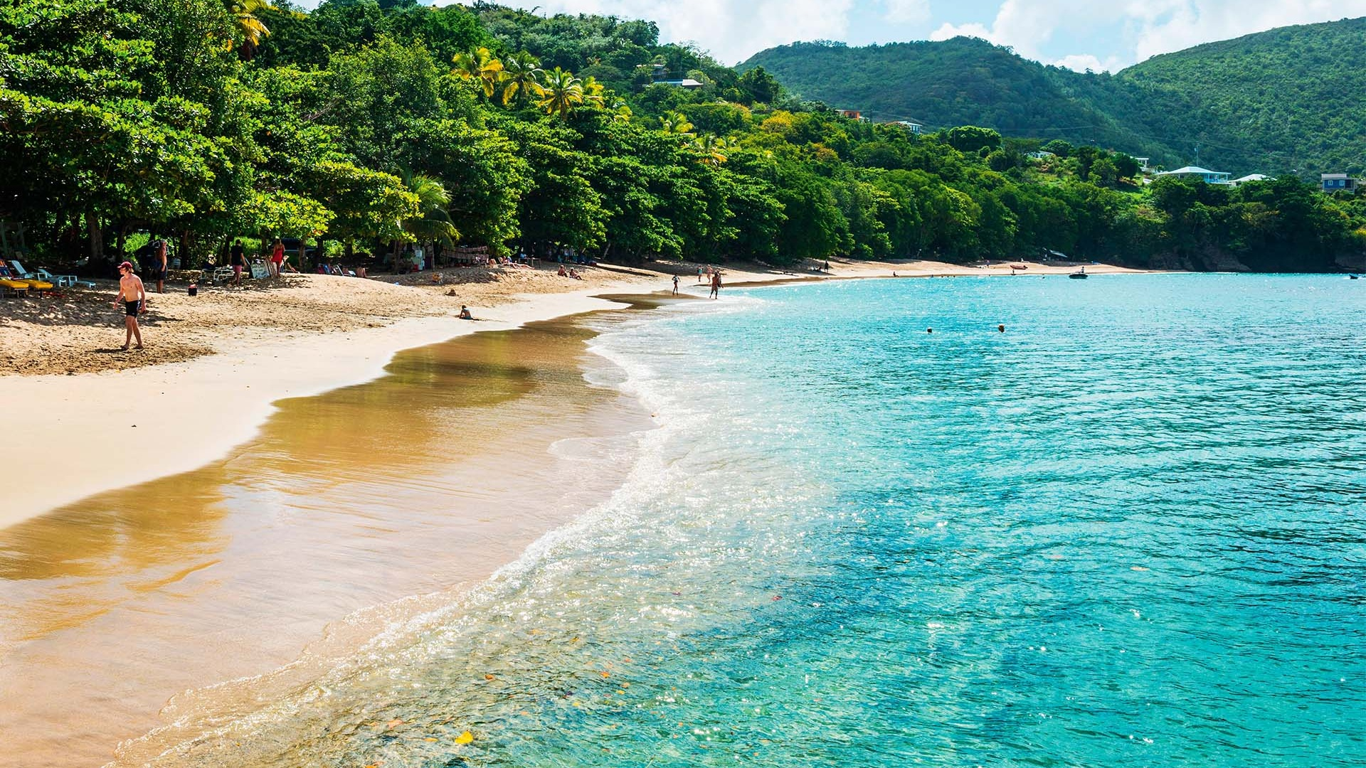 Beach in Bequia, Caribbean