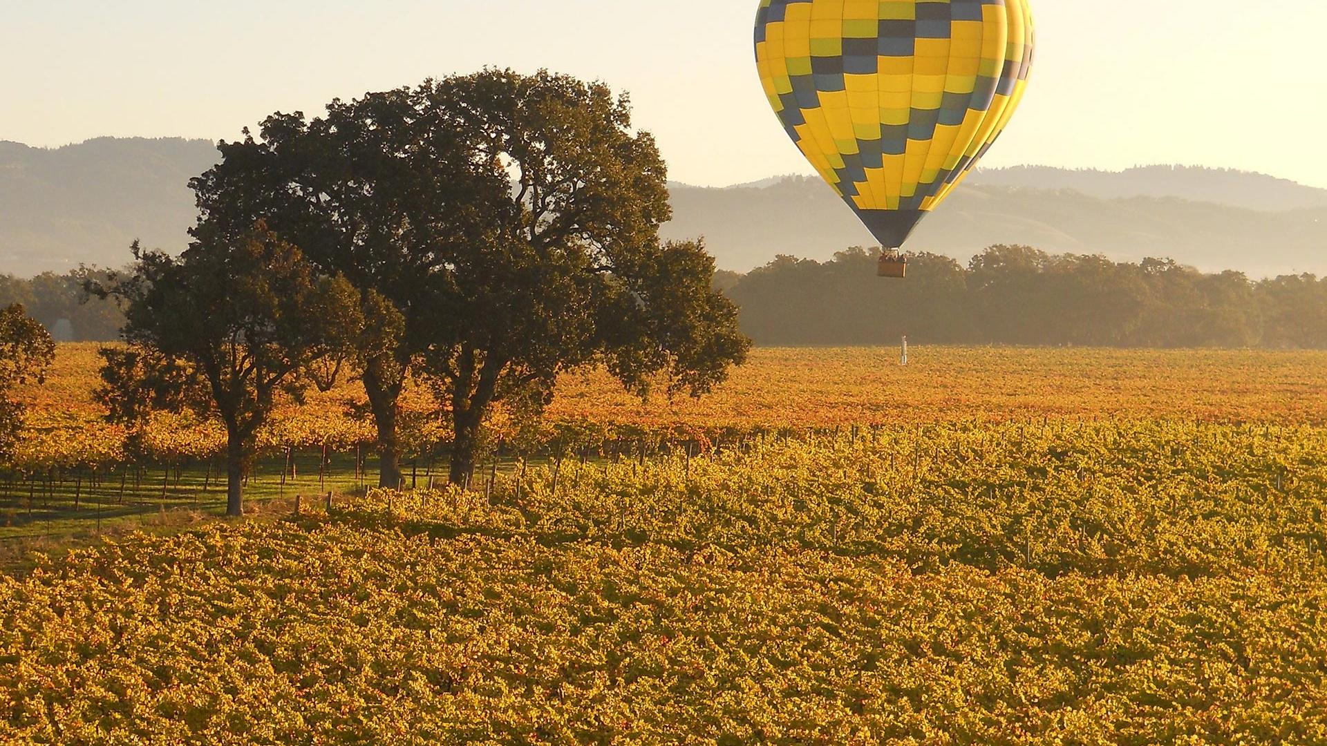Hot air balloon in Sonoma County, California