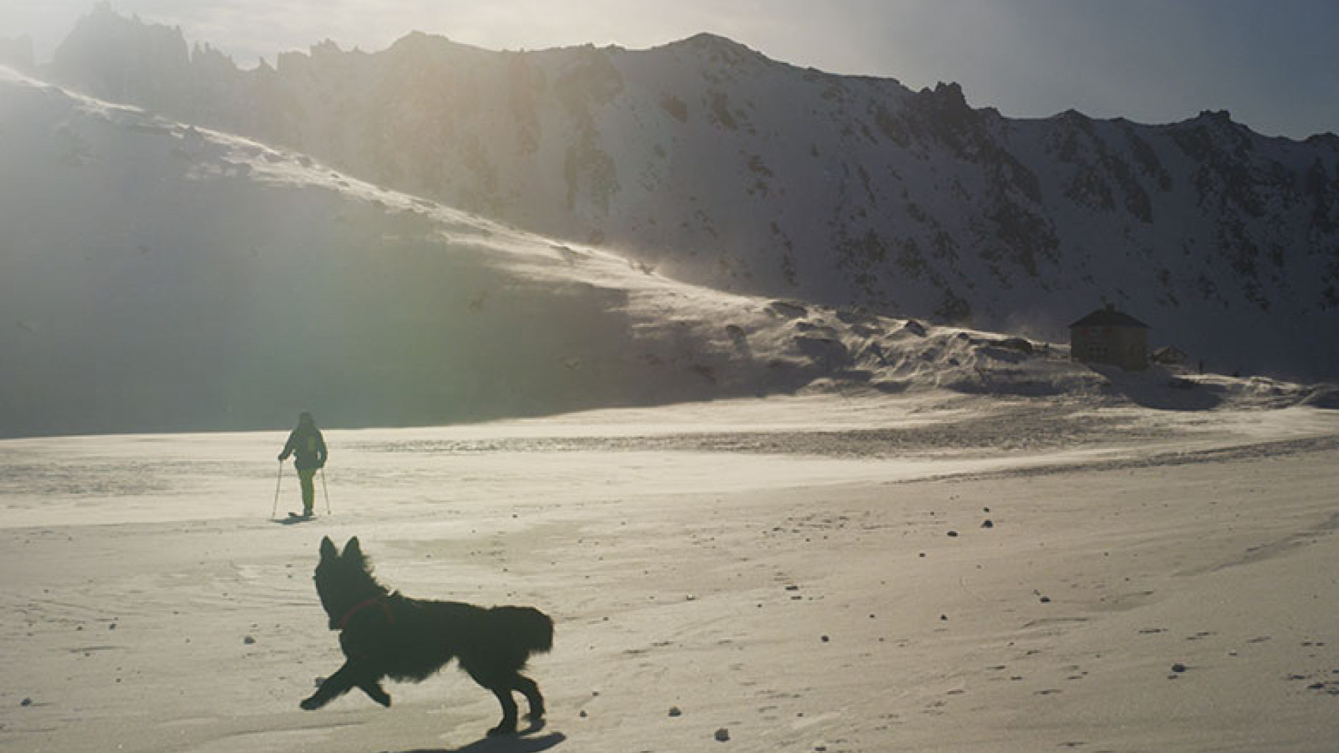 From-the-Film-Sun-Dog-©Ben-Sturgulewski-(19)
