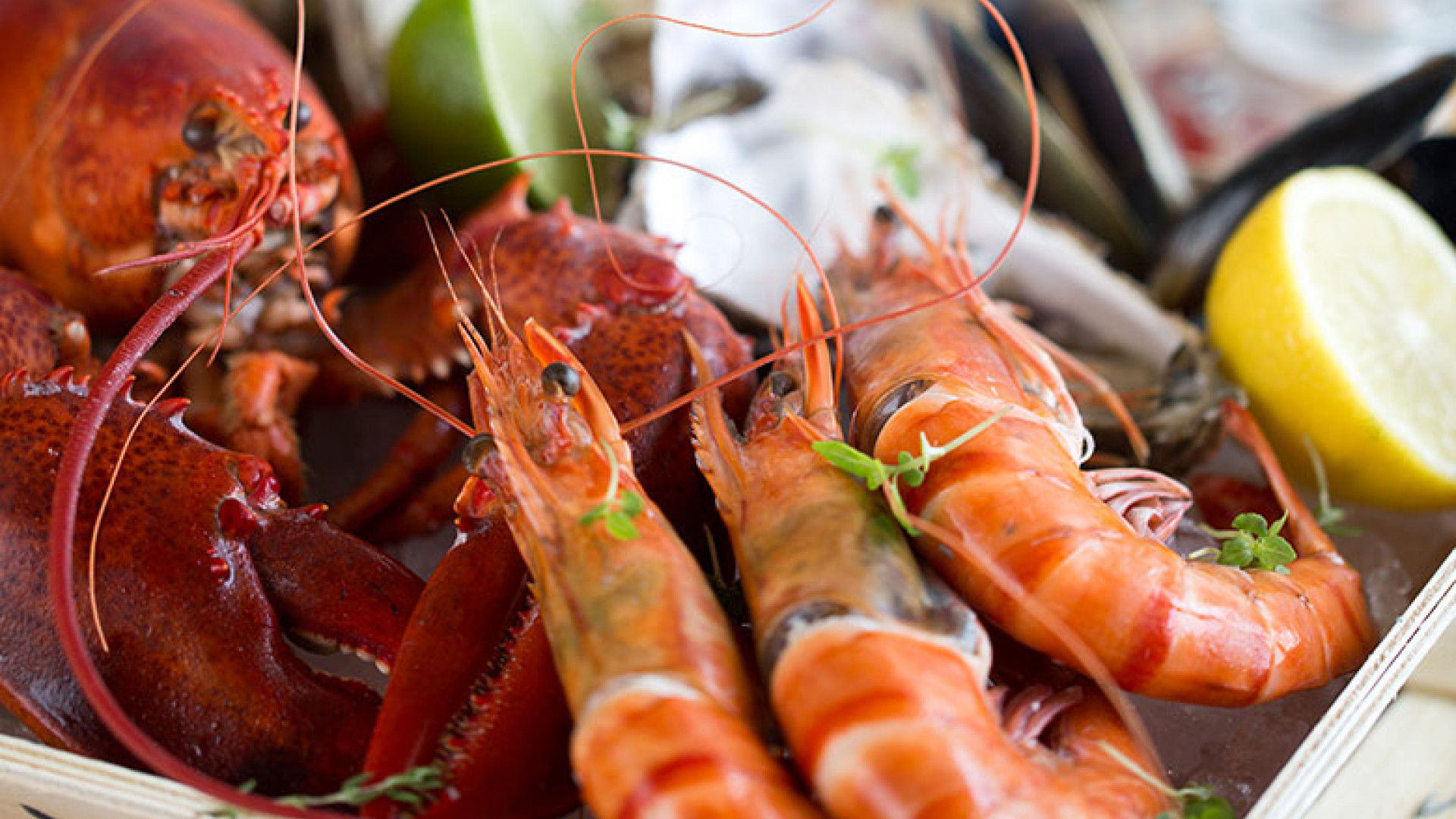 DXBPH_P242_Seafood_with_Champagne_75699