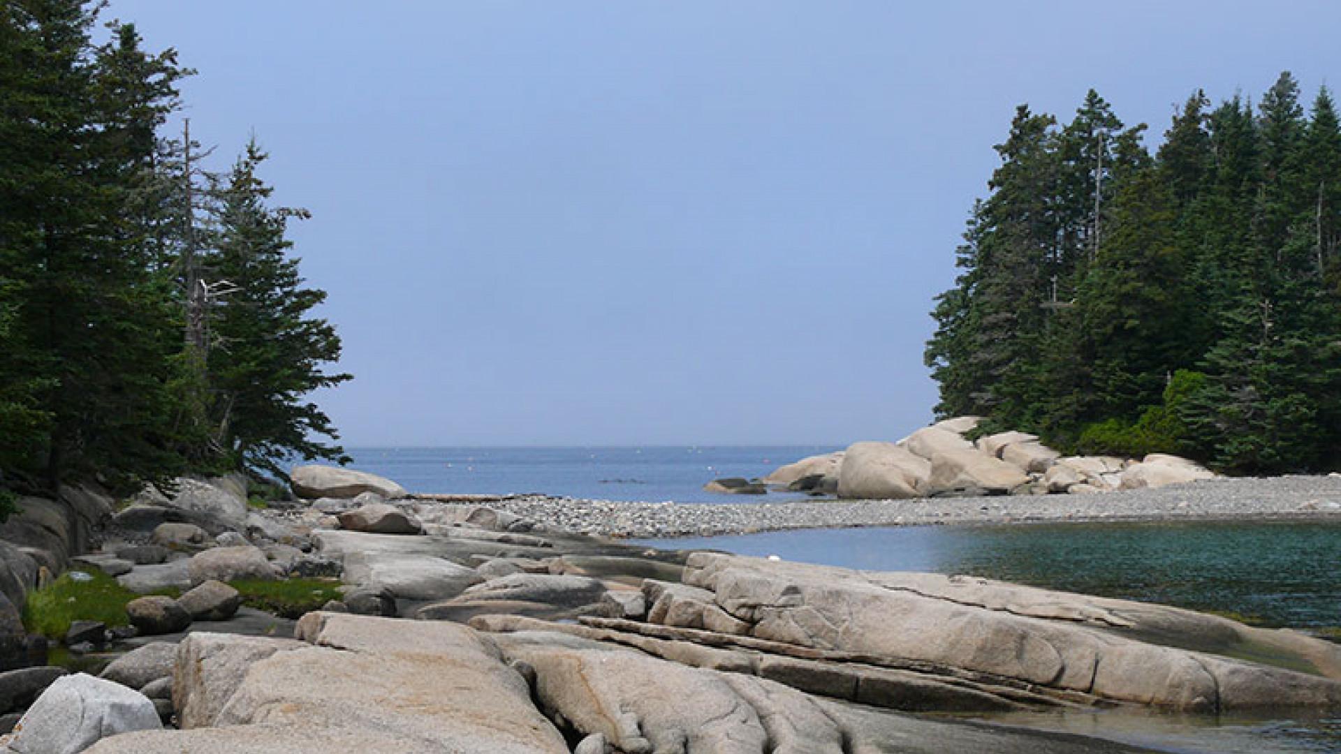 Spectacle-Island-courtesy-of-Hannah-Lazaro-(2)