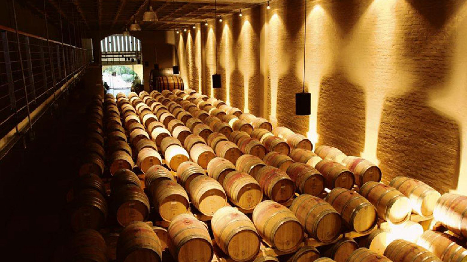Groot-Constantia-barrels.-Image-credit-Cape-Town-Tourism