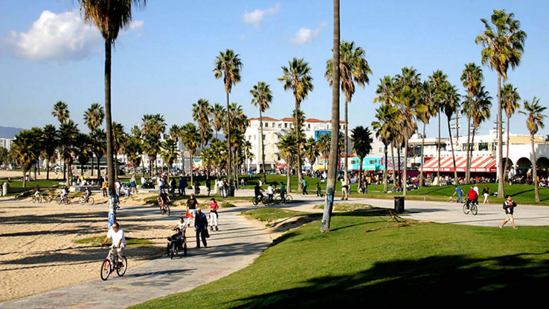 Bicycle-Ride-along-Venice-Beach