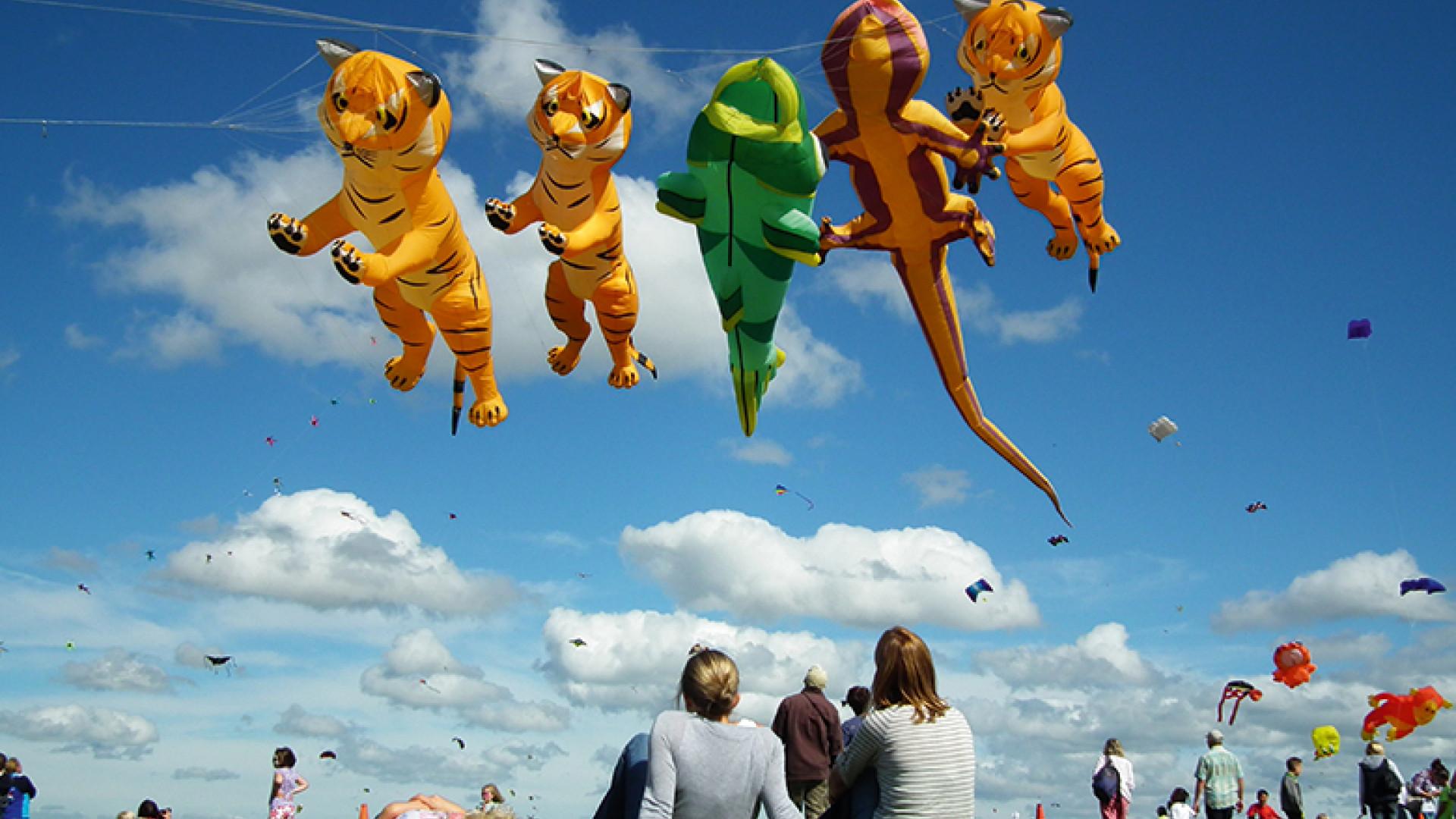 Tigers,-Gecko-&-Fish-with-spectators-(credit-Myk-Garton)