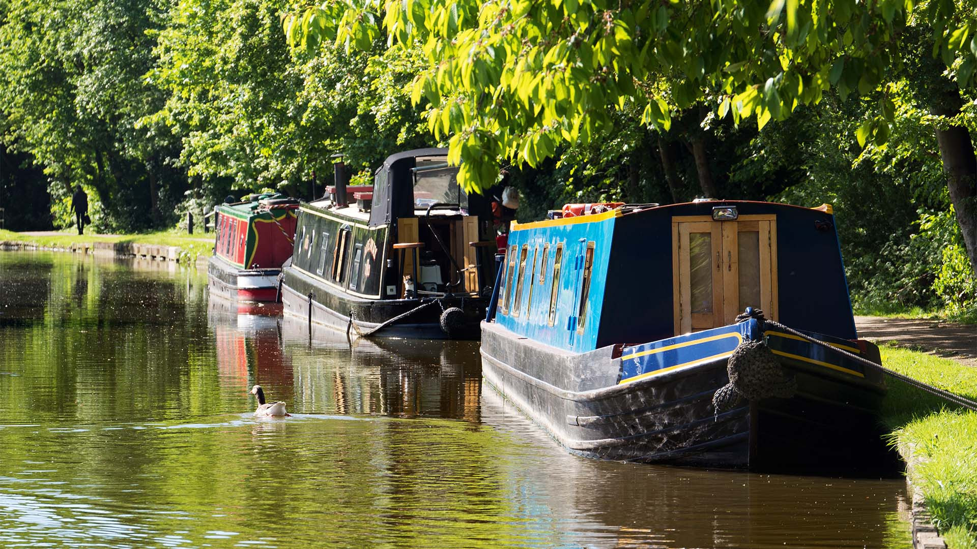 Canal boating in Oxford Canal