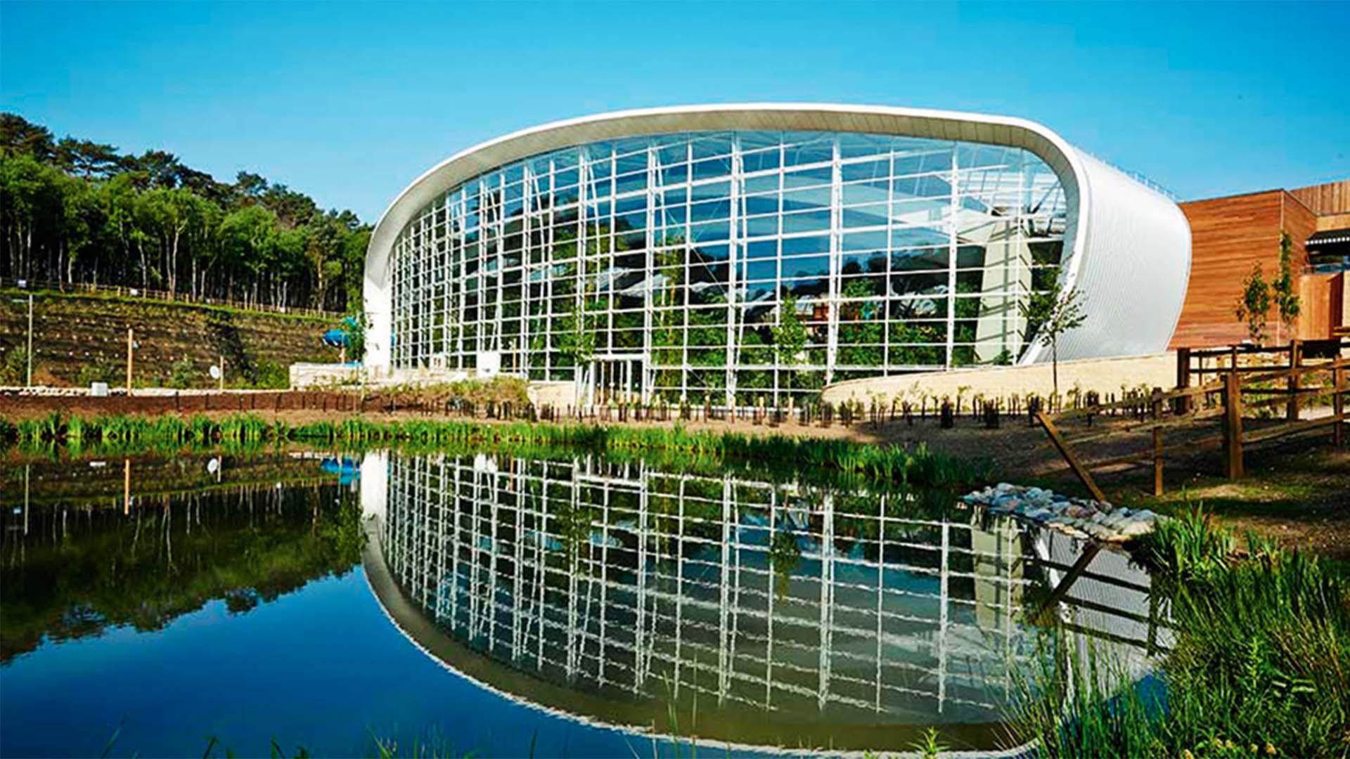 Woburn Forest's Centre Parcs, Bedfordshire