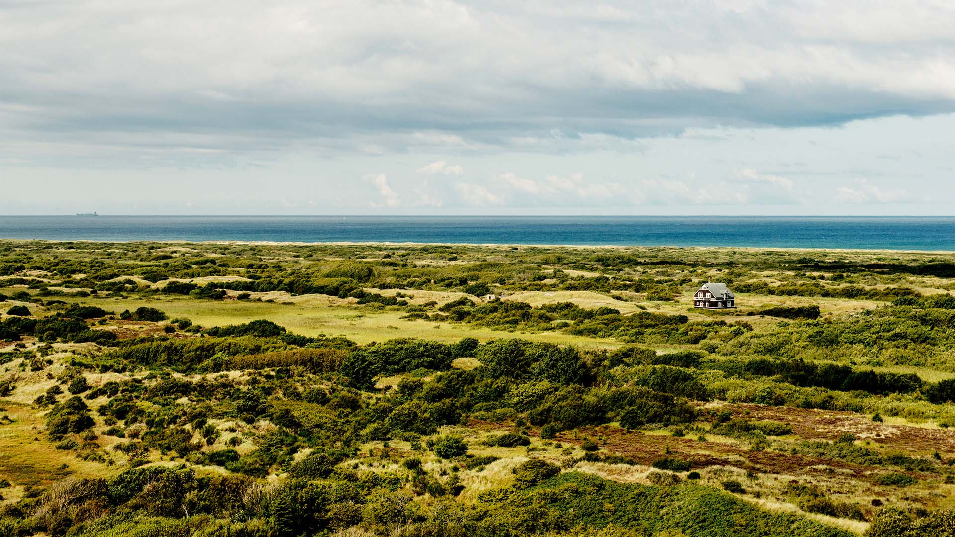 Skagen countryside and wildlife
