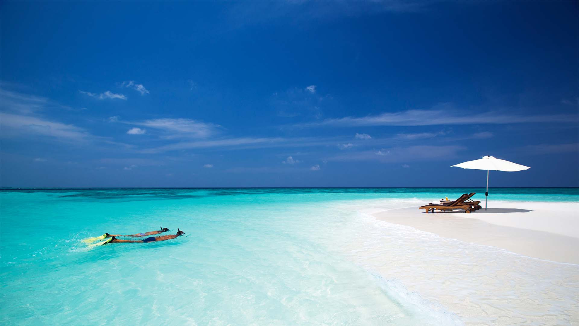 Snorkelling off the coast of the Maldives