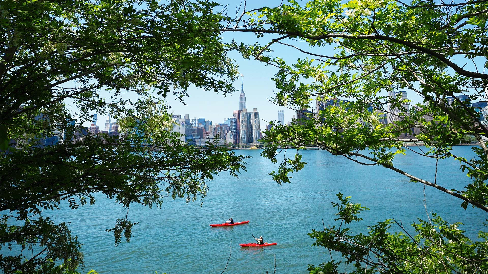 Kayakers and manhattan seen through trees