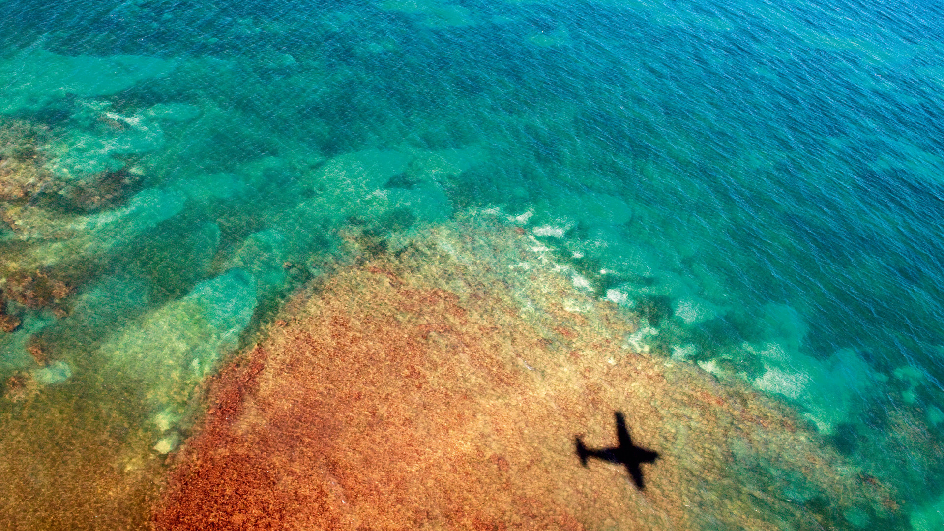 A plane flying over the sea towards Vieques island