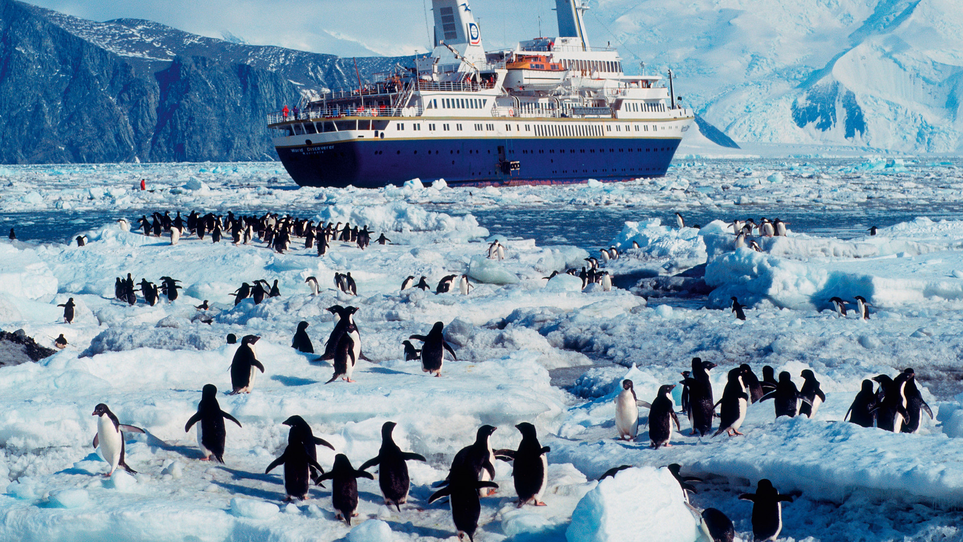 Penguins and an ice-breaker on an Antarctic cruise