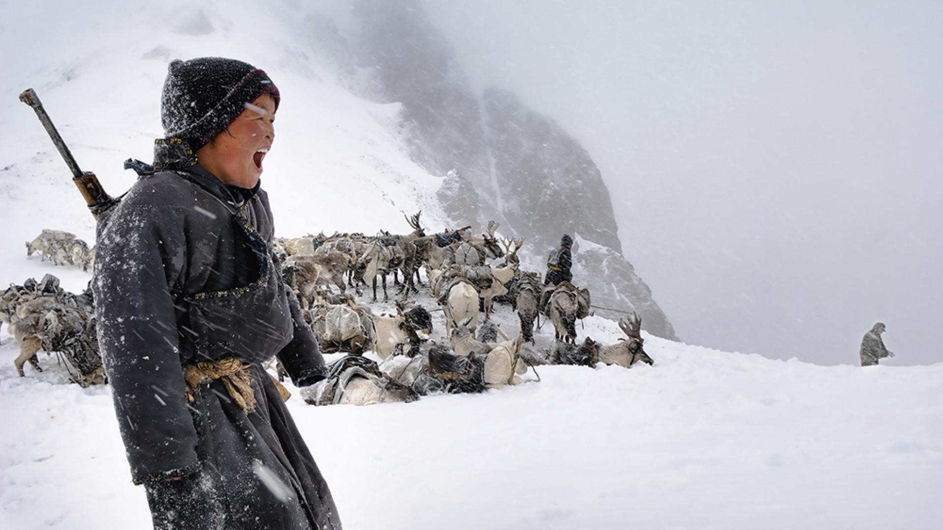 Boy shouting while taking reindeer out Kosgholgonduk Pass, Mongolia