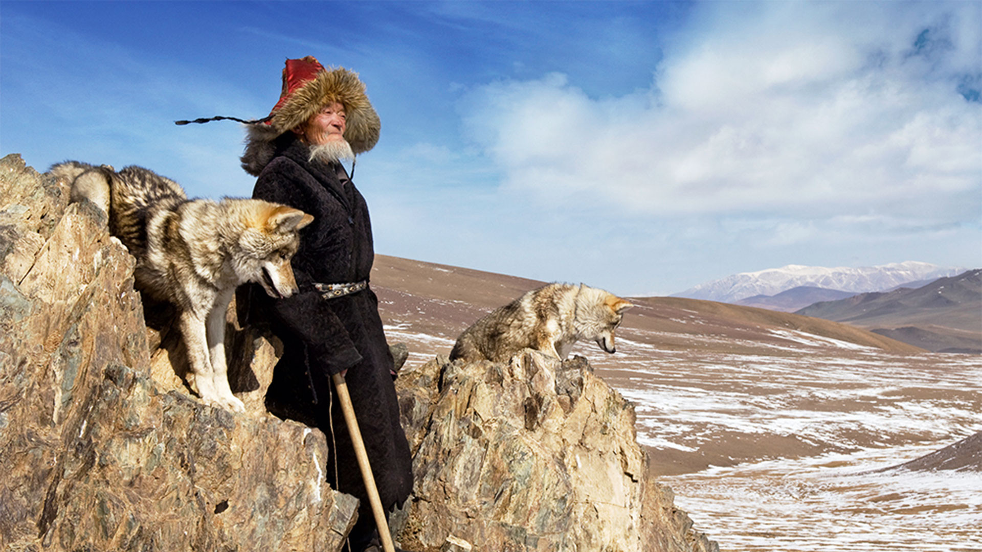 A nomad with tamed wolves in Olgii province, Mongolia