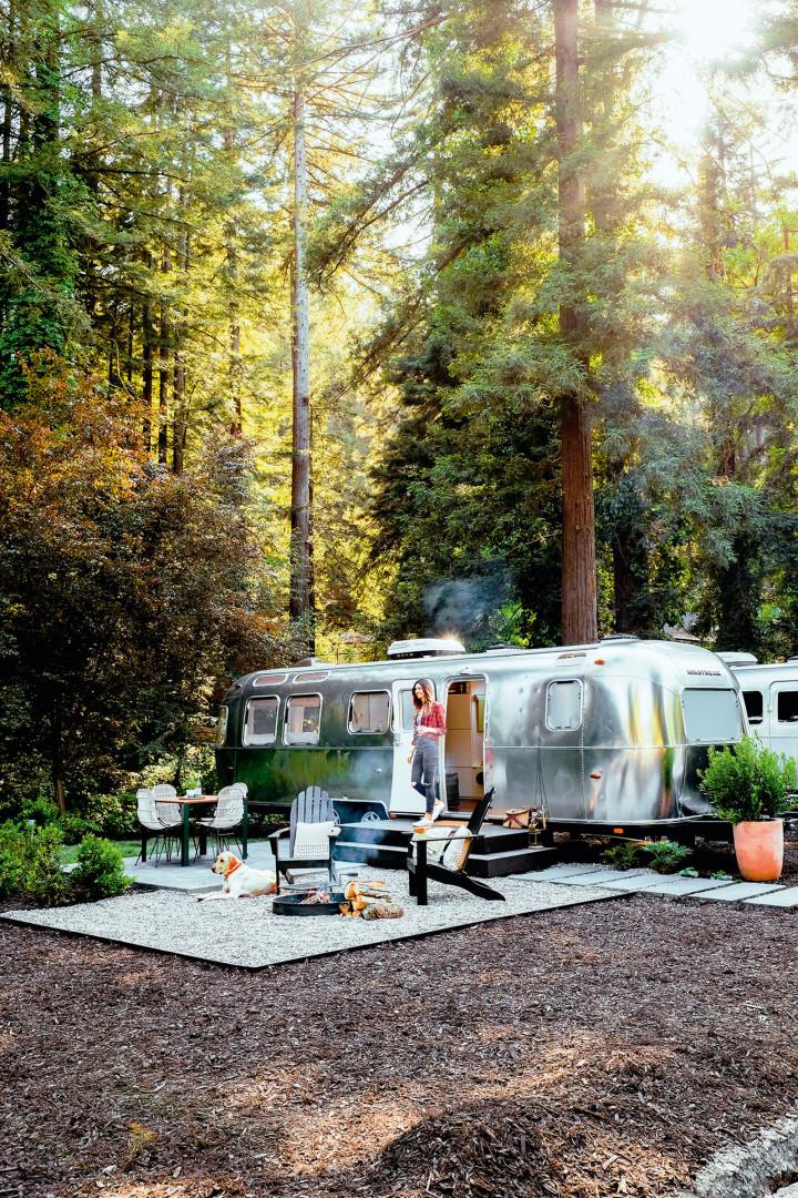 Camper van in the Californian redwoods