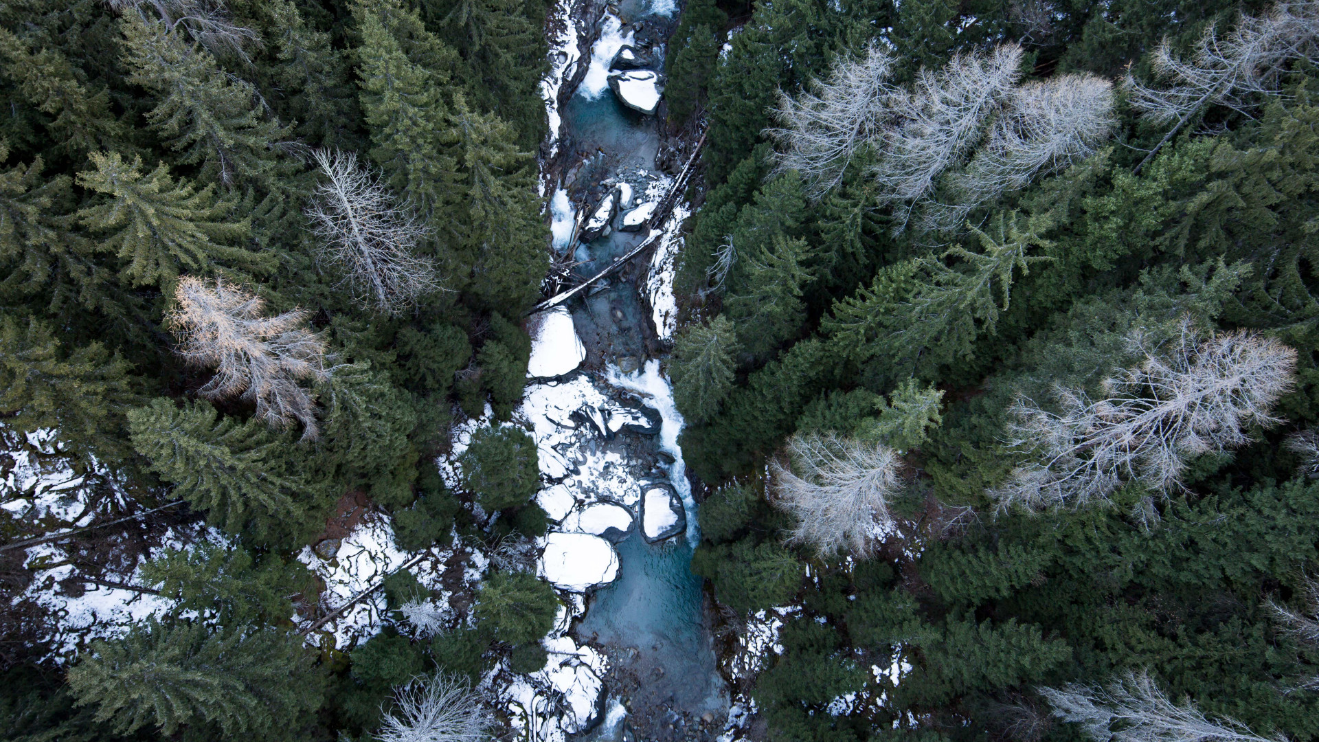 View from a suspension bridge in the Swiss Alps