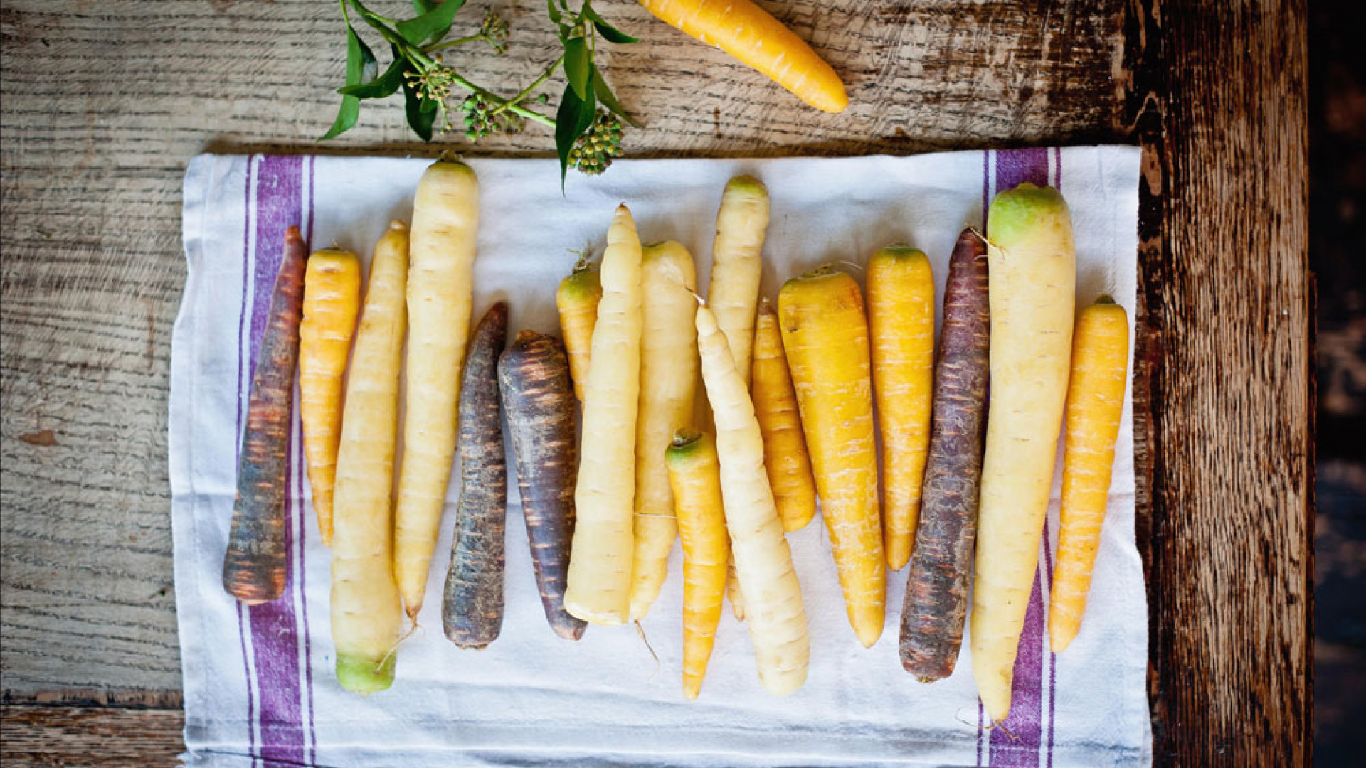 Carrots at the Larder