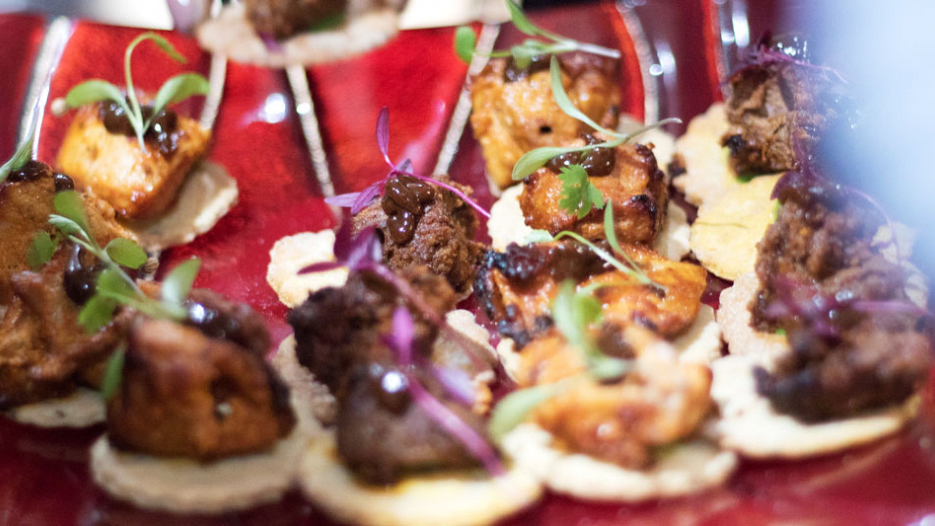 Appetisers at Tapasya @ Marina in Hull