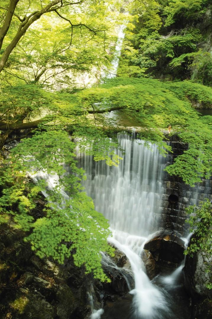 Nunobiki Falls, near Kobe station