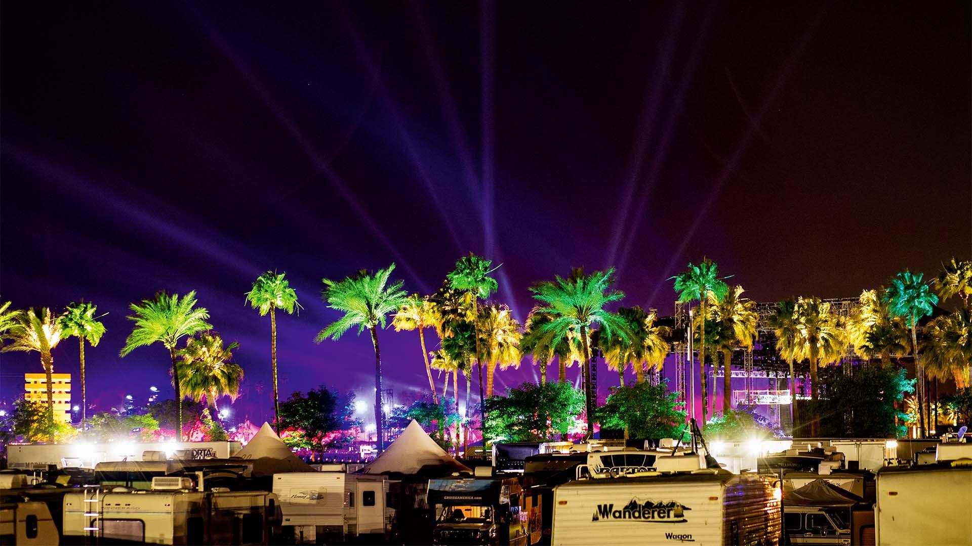 Palms at night, Coachella Festival 2016