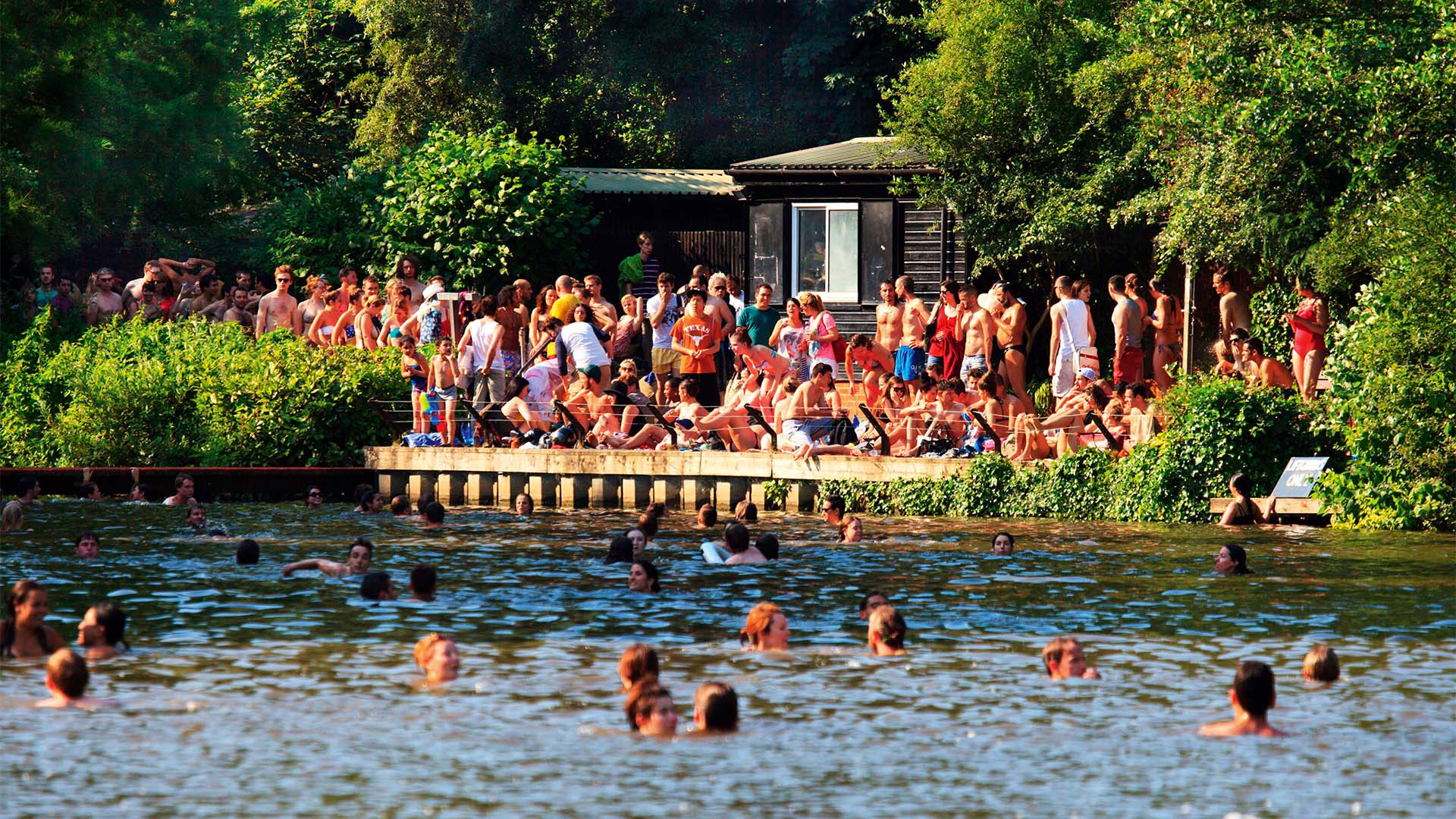 Swimmers at Hampstead Mixed Pond, north London