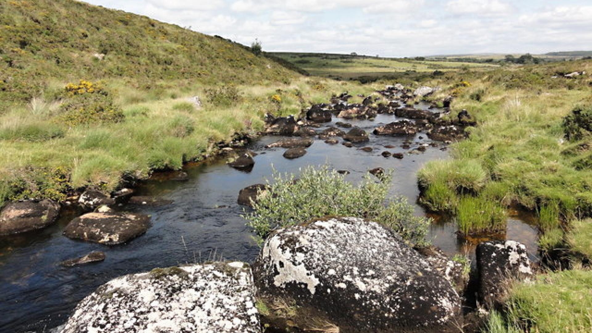 Swimming spot on River Swincombe, Devon