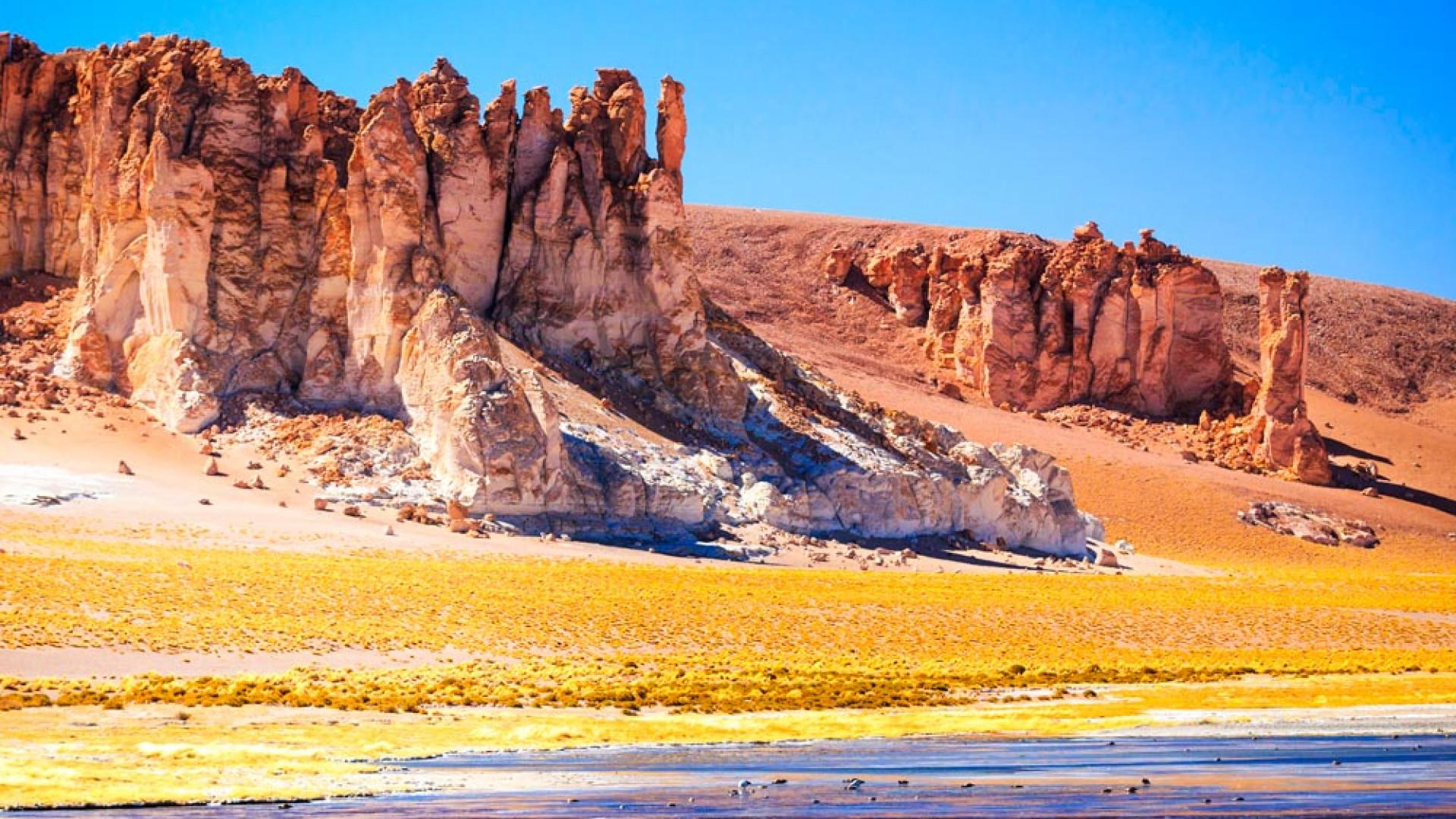 Salarde Tara San Pedrode Atacama