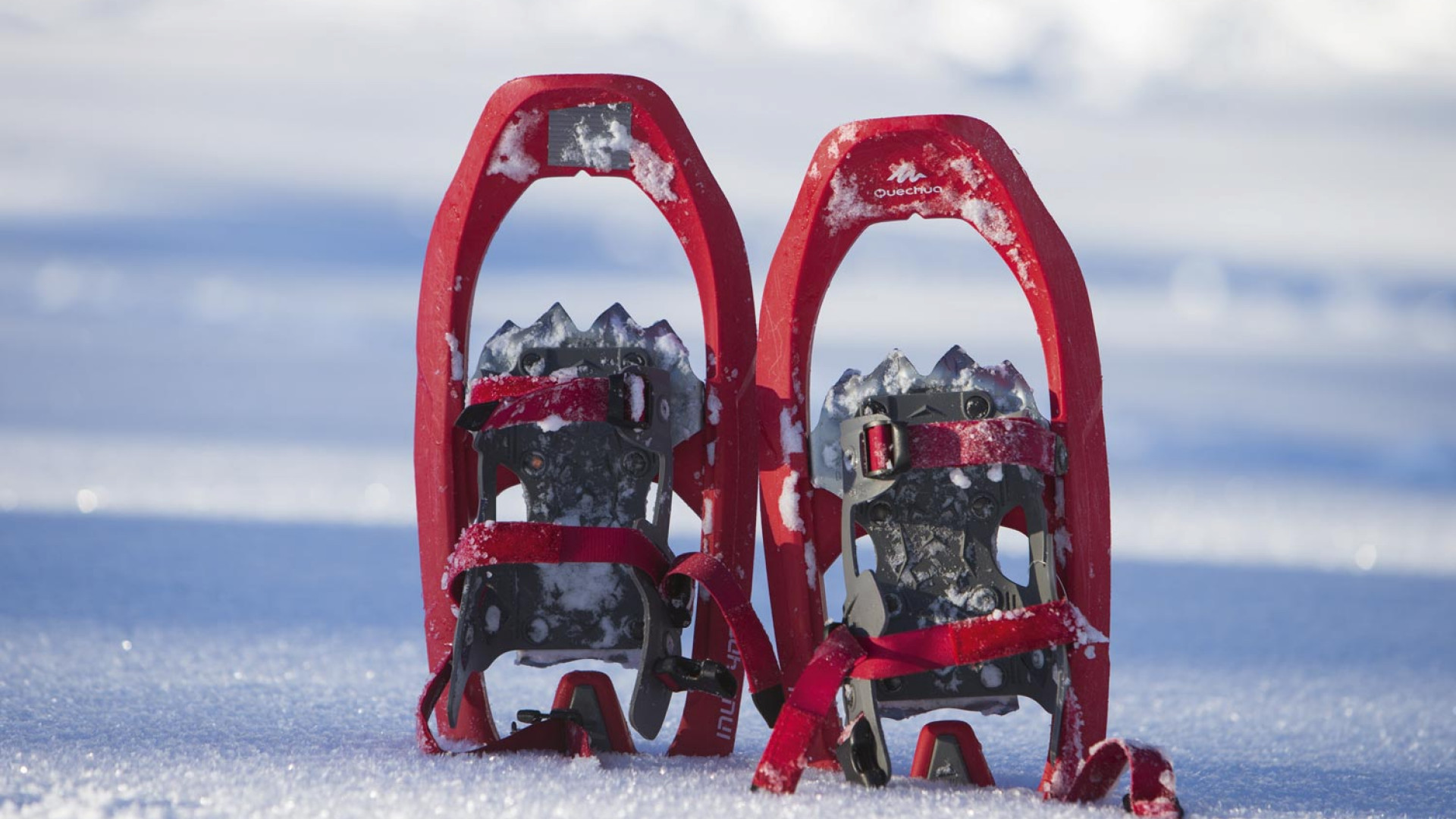 Snow shoes used in mountain survival masterclass