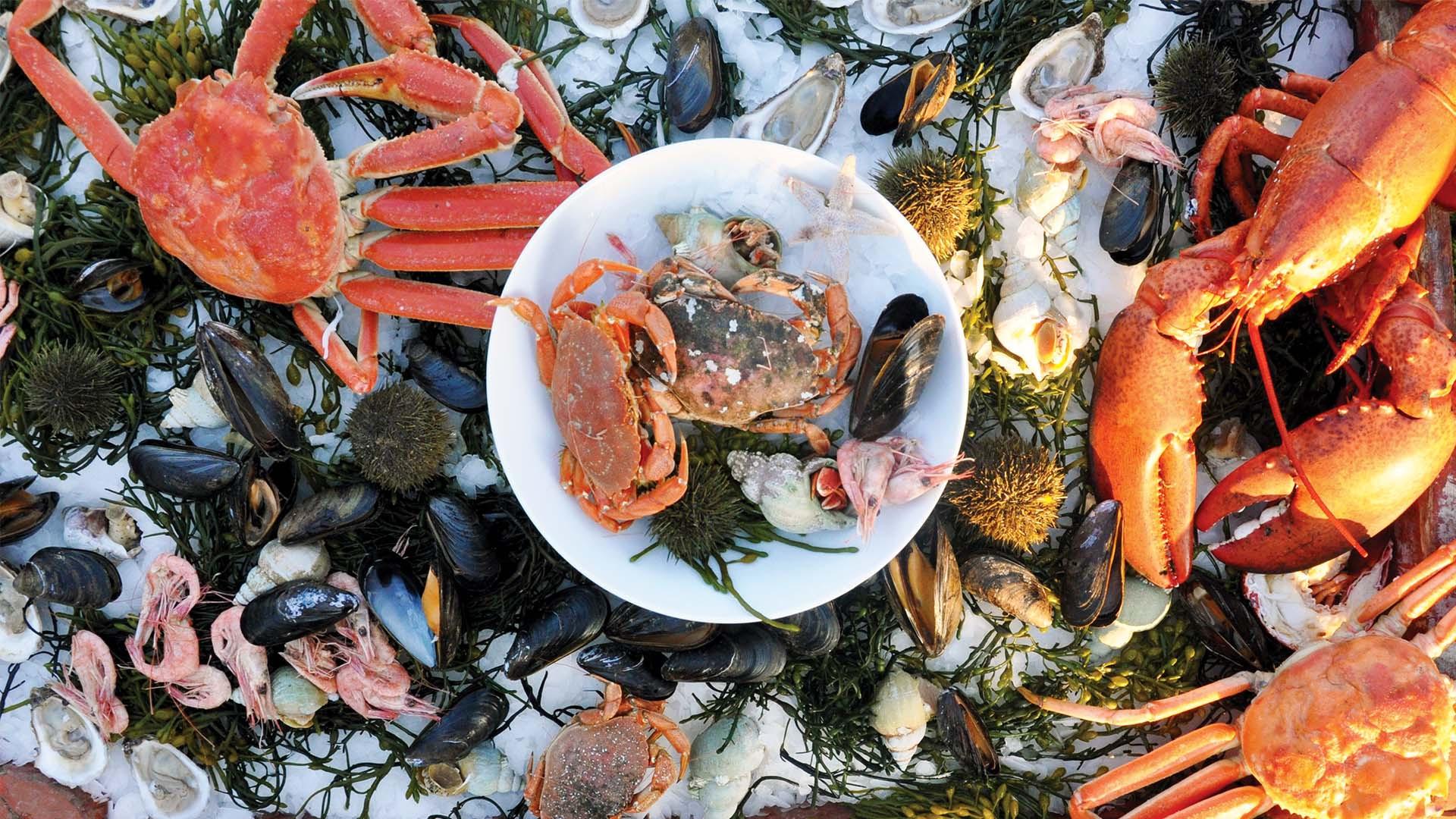 Seafood platter in St. John's Newfoundland & Labrador, Canada