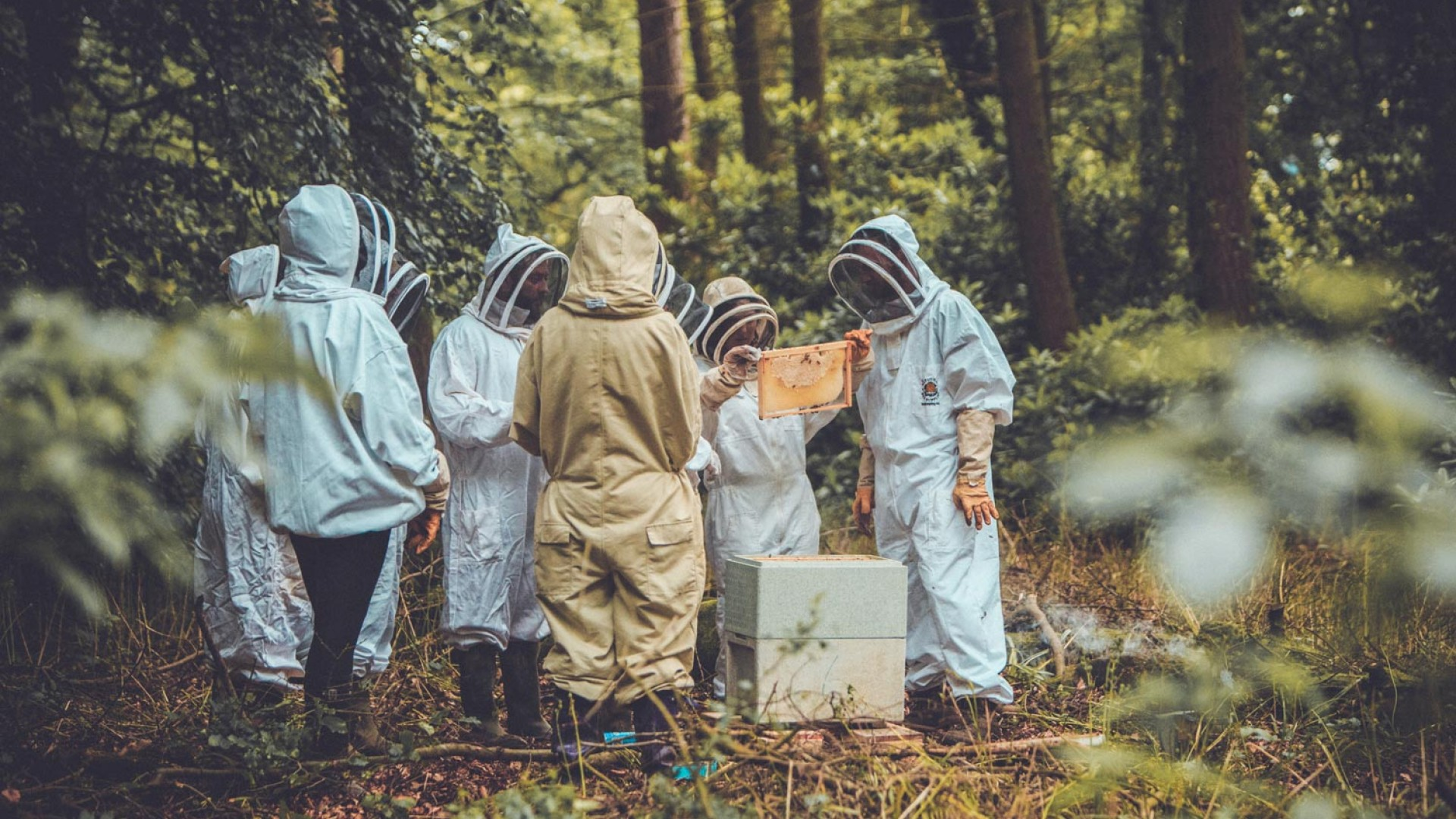 Beekeeping at Wildfire Adventure Camp