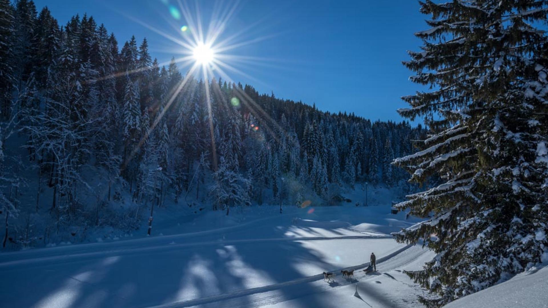 Piste at Alphotel, Austria