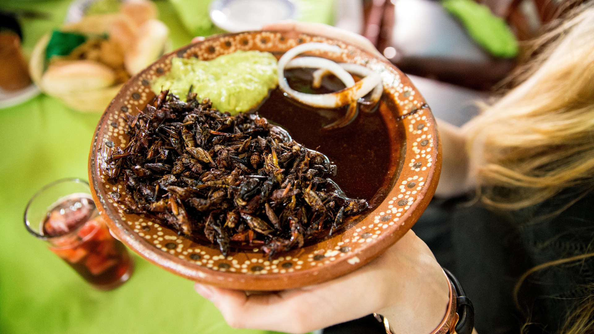 Eating insects on a new food tour of Mexico