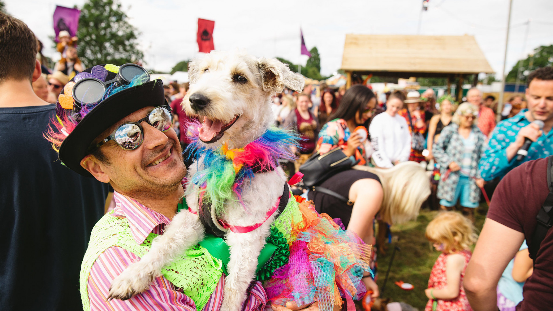 The Dog Show at Standon Calling