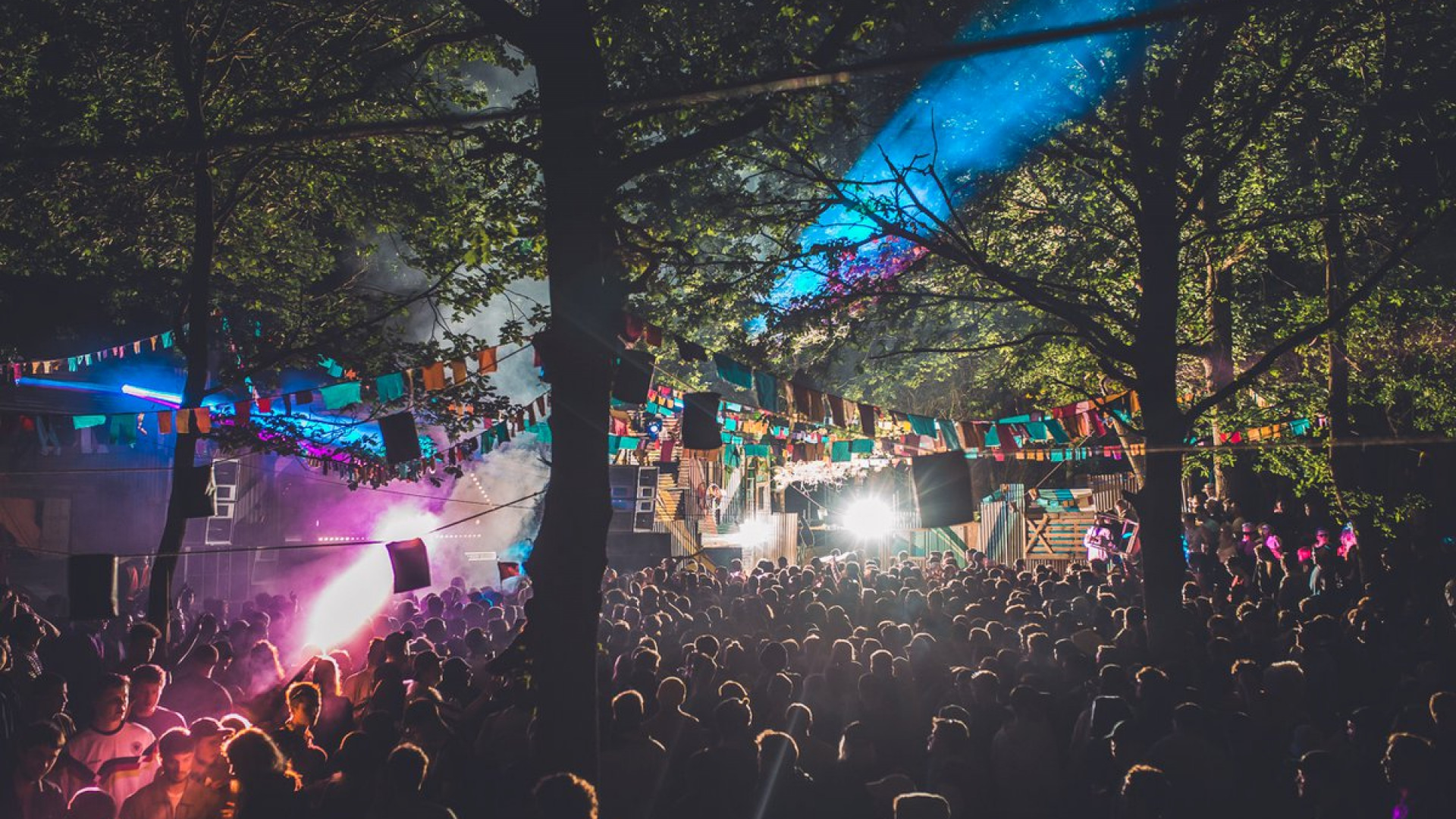 Farr Festival is set in a forest in Hertfordshire