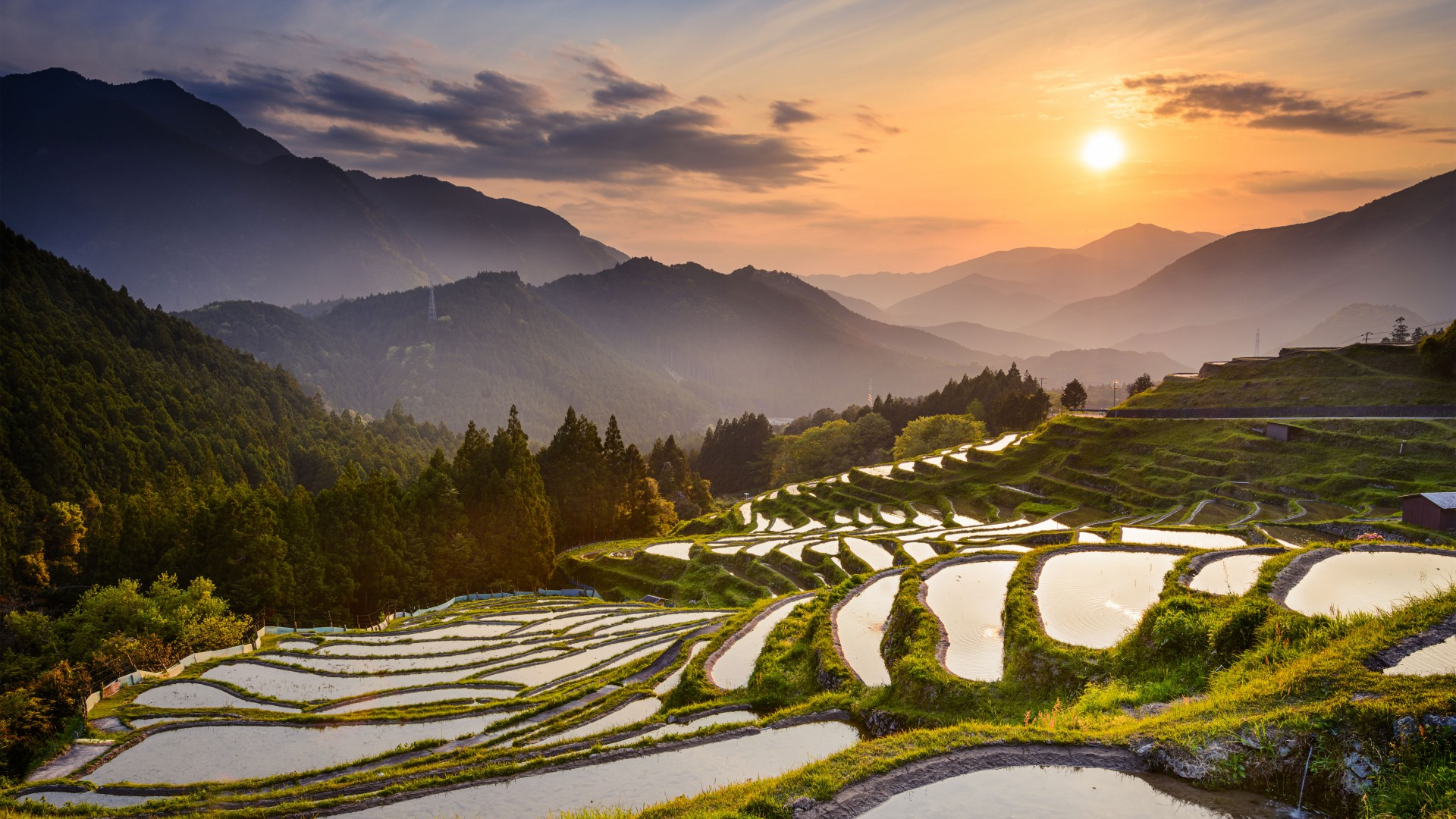 Best adventure holidays | rice fields in Noto, Japan