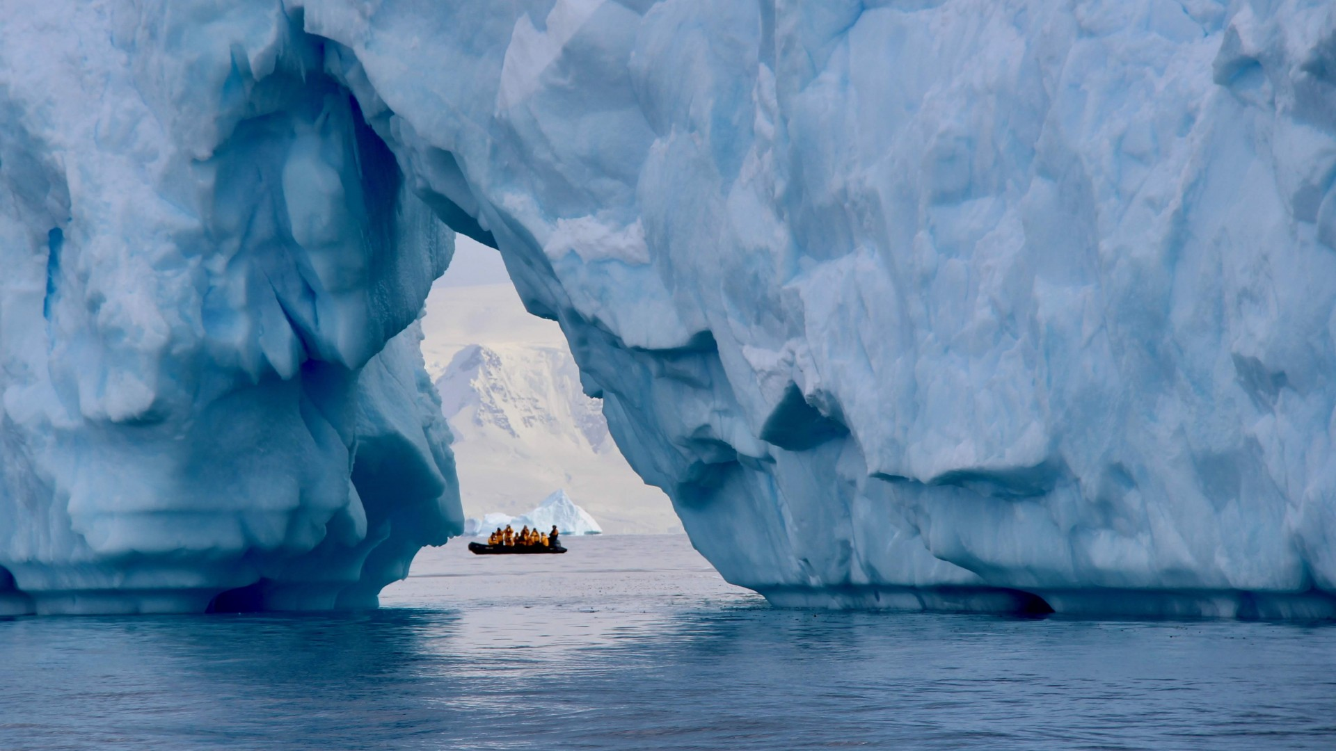 Cruise in Antarctica