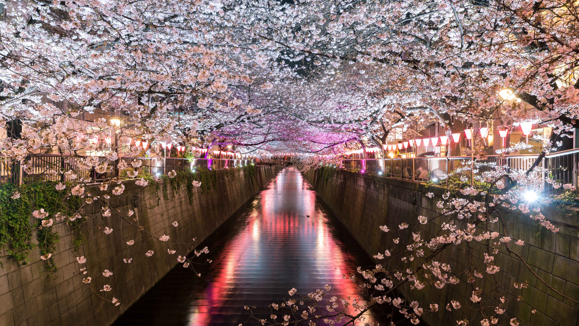 Japan Rugby World Cup 2019: The Meguro Canal at night in Tokyo, Japan