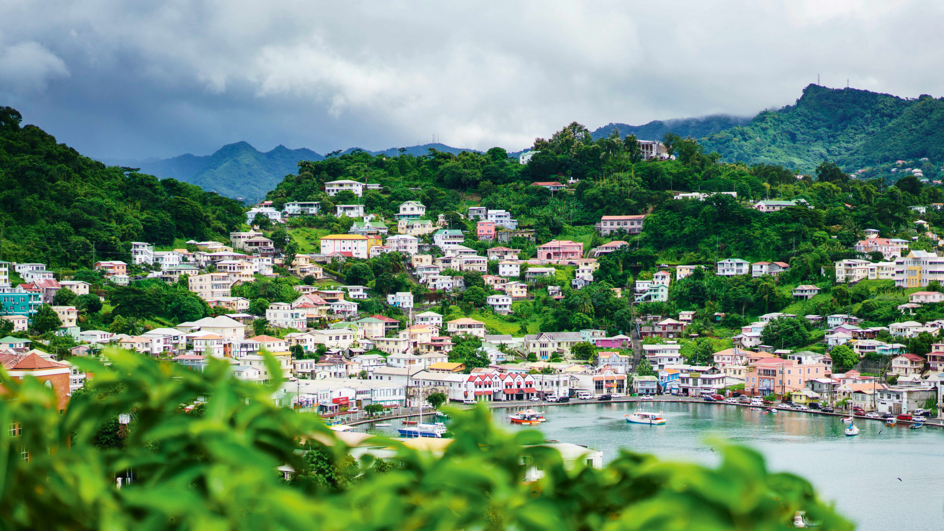 Grenada food and drink: St George's Harbour, Grenada