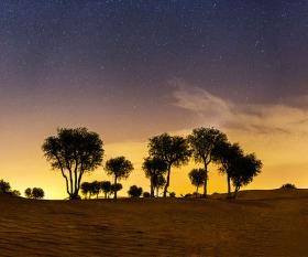 A desert Oasis near Dubai