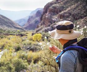 Hiking the Grand Canyon rim to rim