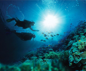 Diving at Sandals