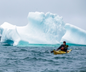 Kayaking past icebergs in Newfoundland, Canada. Photograph by Destination St. John's