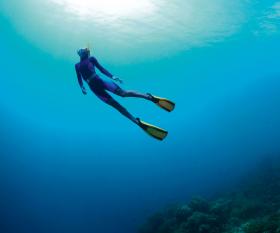 Free diving. Photograph by Dudarev Mikhail