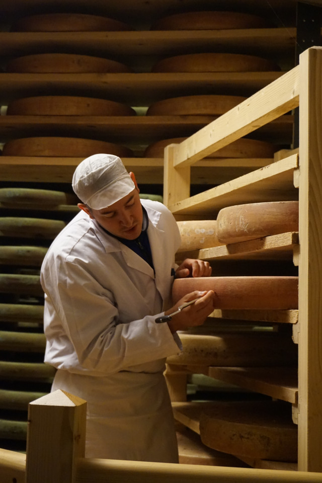 An artisan working on Comte cheese in Jura, France