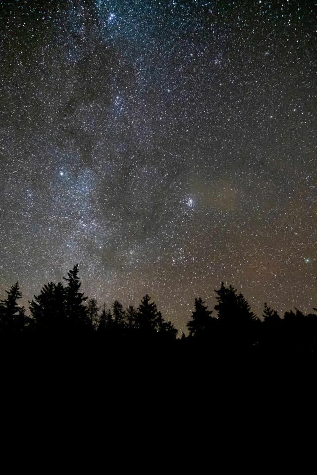 Dark skies within Galloway Forest Park, Scotland