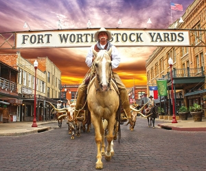 fort-worth_widget