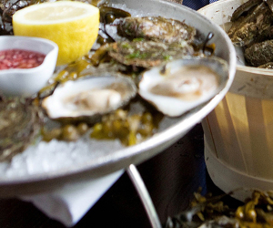 Galway-Native-Oysters